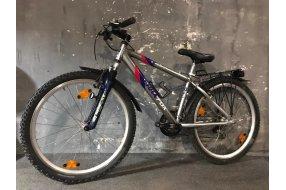 Велосипед Tera Fox TFX50 #209